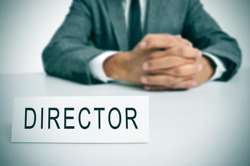 Do I need a Local Company Director in Turkey?